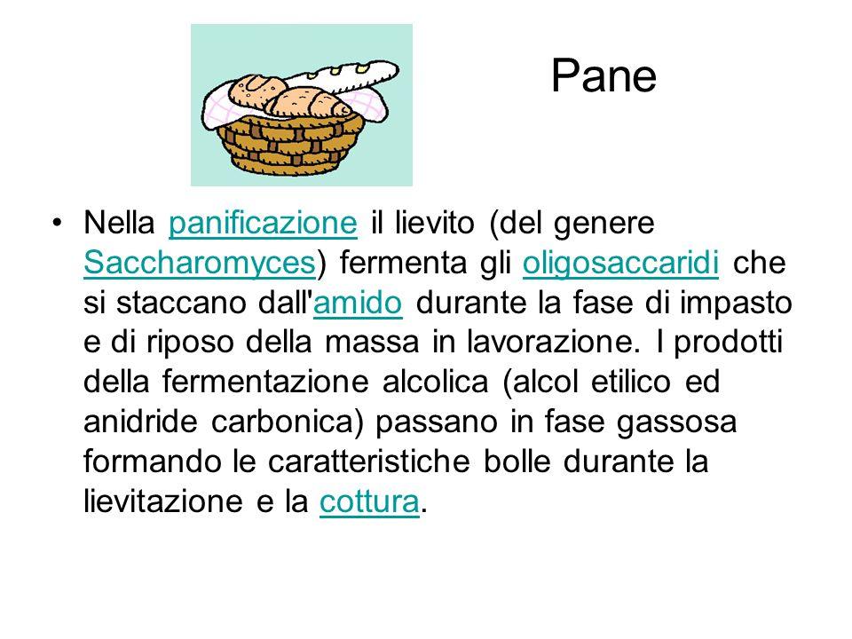 Pane Nella panificazione il lievito (del genere Saccharomyces) fermenta gli oligosaccaridi che si staccano dall amido durante la fase di impasto e di riposo della massa in lavorazione.