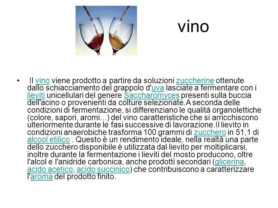 vino Il vino viene prodotto a partire da soluzioni zuccherine ottenute dallo schiacciamento del grappolo d'uva lasciate a fermentare con i lieviti uni