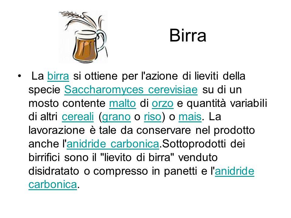 Birra La birra si ottiene per l azione di lieviti della specie Saccharomyces cerevisiae su di un mosto contente malto di orzo e quantità variabili di altri cereali (grano o riso) o mais.