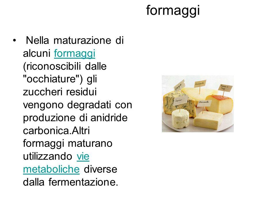 formaggi Nella maturazione di alcuni formaggi (riconoscibili dalle occhiature ) gli zuccheri residui vengono degradati con produzione di anidride carbonica.Altri formaggi maturano utilizzando vie metaboliche diverse dalla fermentazione.formaggivie metaboliche