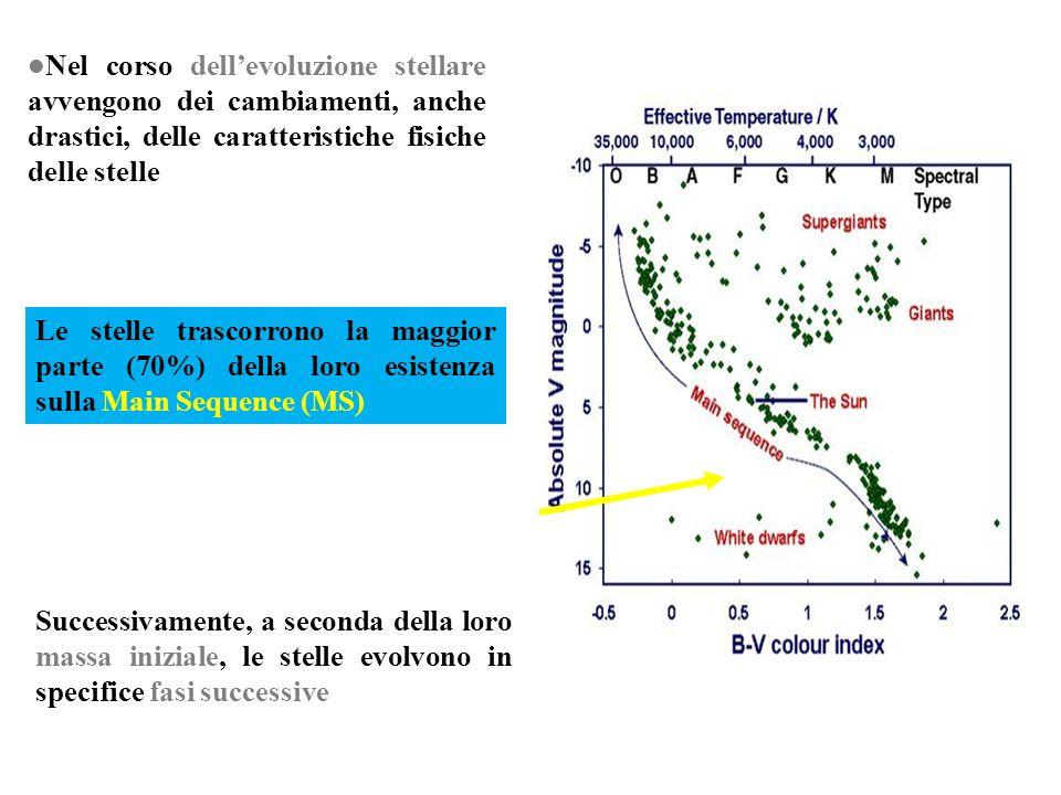 Successivamente, a seconda della loro massa iniziale, le stelle evolvono in specifice fasi successive Nel corso dellevoluzione stellare avvengono dei
