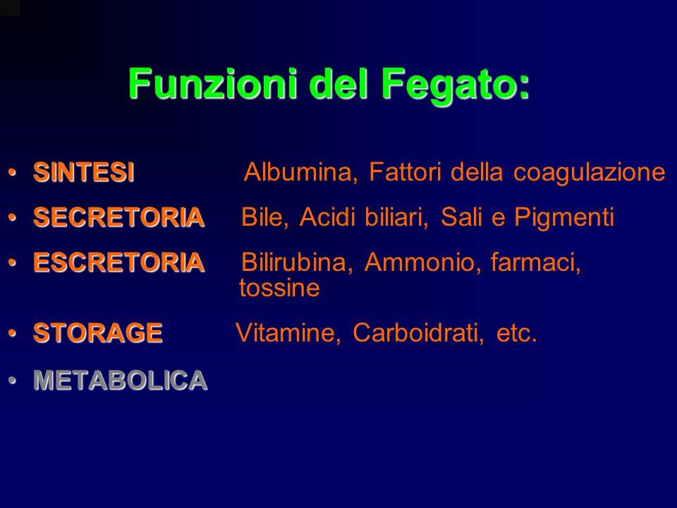 Funzioni del Fegato: SINTESISINTESI Albumina, Fattori della coagulazione SECRETORIASECRETORIA Bile, Acidi biliari, Sali e Pigmenti ESCRETORIAESCRETORI