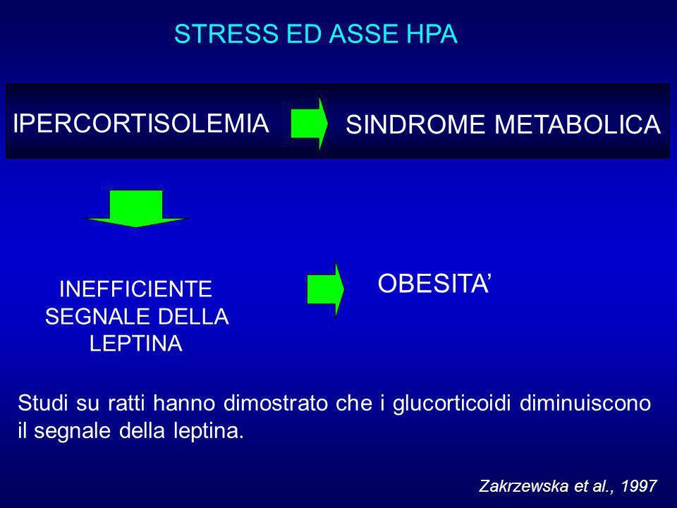 STRESS ED ASSE HPA IPERCORTISOLEMIA SINDROME METABOLICA INEFFICIENTE SEGNALE DELLA LEPTINA Zakrzewska et al., 1997 Studi su ratti hanno dimostrato che i glucorticoidi diminuiscono il segnale della leptina.