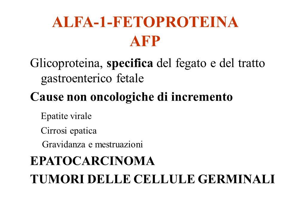 ALFA-1-FETOPROTEINA AFP Glicoproteina, specifica del fegato e del tratto gastroenterico fetale Cause non oncologiche di incremento Epatite virale Cirr