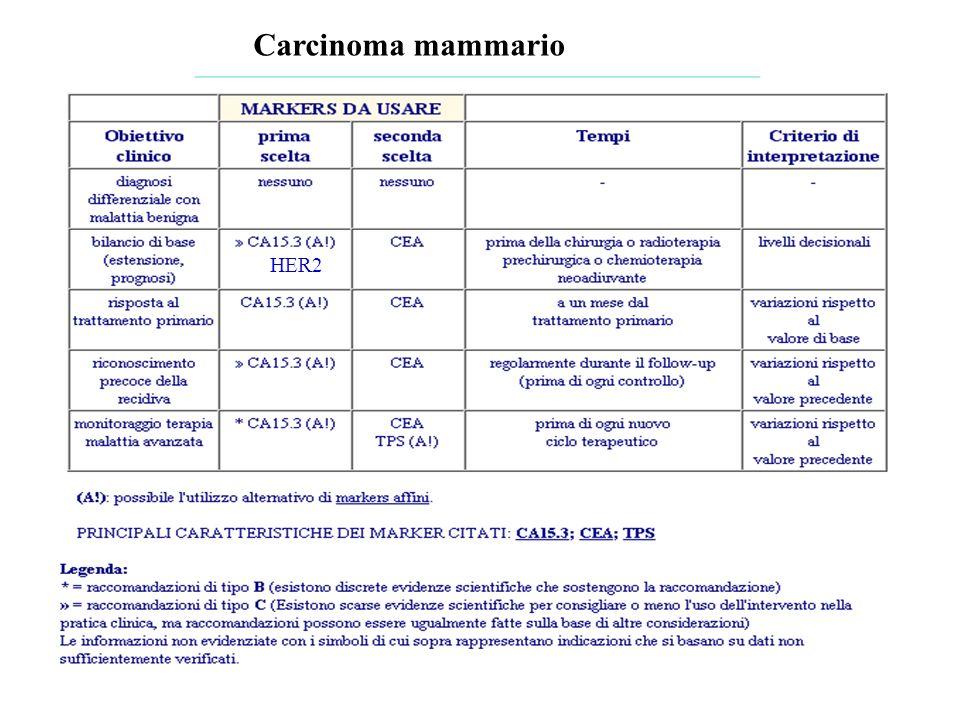Carcinoma mammario HER2