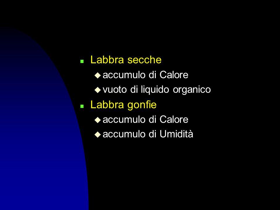 n Labbra secche u accumulo di Calore u vuoto di liquido organico n Labbra gonfie u accumulo di Calore u accumulo di Umidità