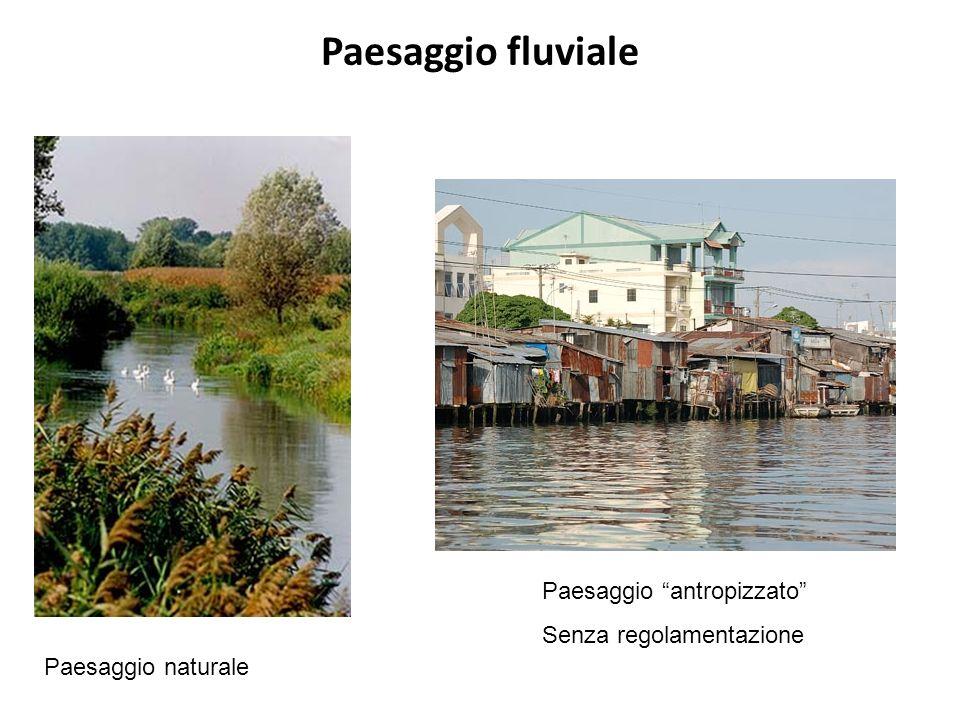 Paesaggio fluviale Paesaggio naturale Paesaggio antropizzato Senza regolamentazione