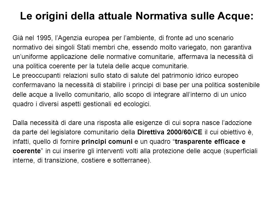Già nel 1995, lAgenzia europea per lambiente, di fronte ad uno scenario normativo dei singoli Stati membri che, essendo molto variegato, non garantiva