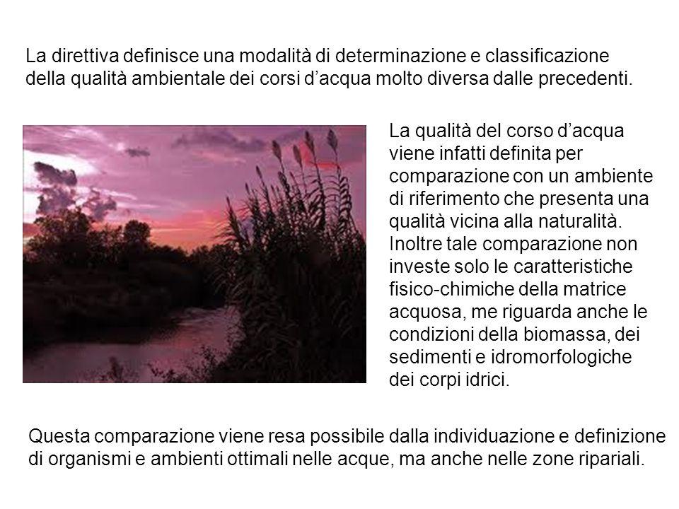 Direttiva europea 2000/60/CE (23 ottobre 2000, Direttiva Quadro sulle acque): Tutela lo stato naturale dei corsi idrici; Visione da corso dacqua ad Ambiente fluviale; Valore di riferimento = ambiente naturale ( stato buono entro dicembre 2015) Direttiva europea: recepita in Italia con il D.Lgs.