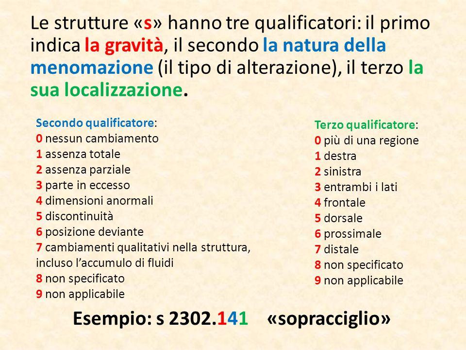 Le strutture «s» hanno tre qualificatori: il primo indica la gravità, il secondo la natura della menomazione (il tipo di alterazione), il terzo la sua