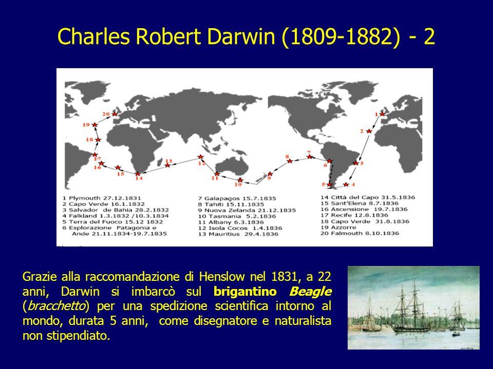 11 Charles Robert Darwin (1809-1882) - 2 Grazie alla raccomandazione di Henslow nel 1831, a 22 anni, Darwin si imbarcò sul brigantino Beagle (bracchet