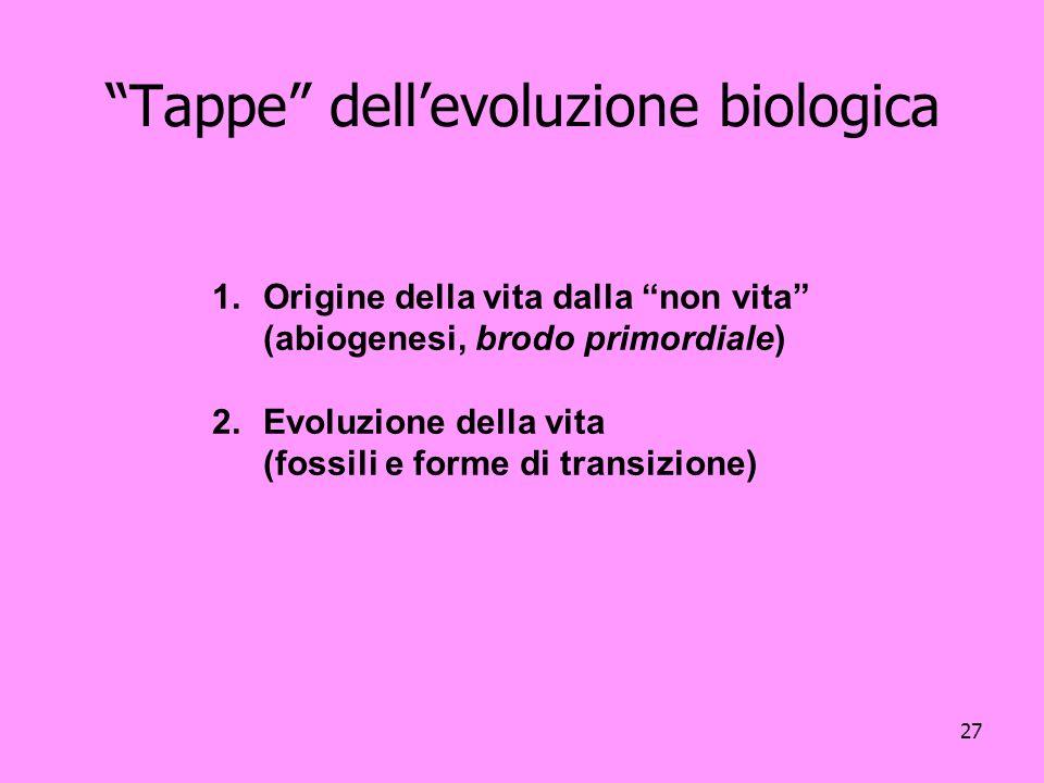 27 Tappe dellevoluzione biologica 1.Origine della vita dalla non vita (abiogenesi, brodo primordiale) 2.Evoluzione della vita (fossili e forme di tran