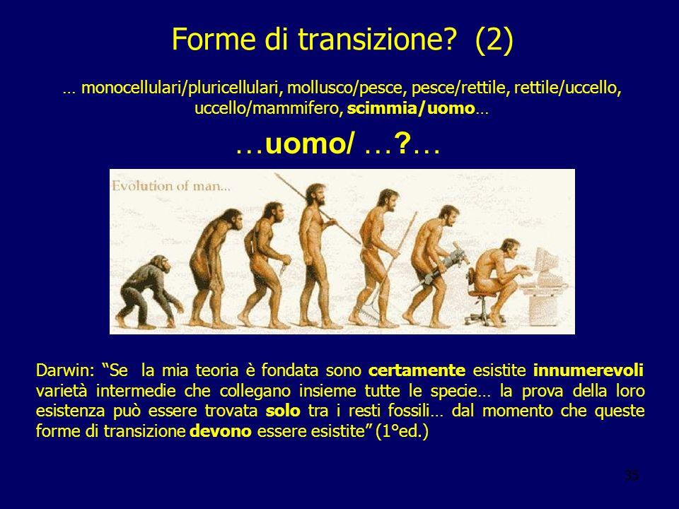 35 Forme di transizione? (2) Darwin: Se la mia teoria è fondata sono certamente esistite innumerevoli varietà intermedie che collegano insieme tutte l