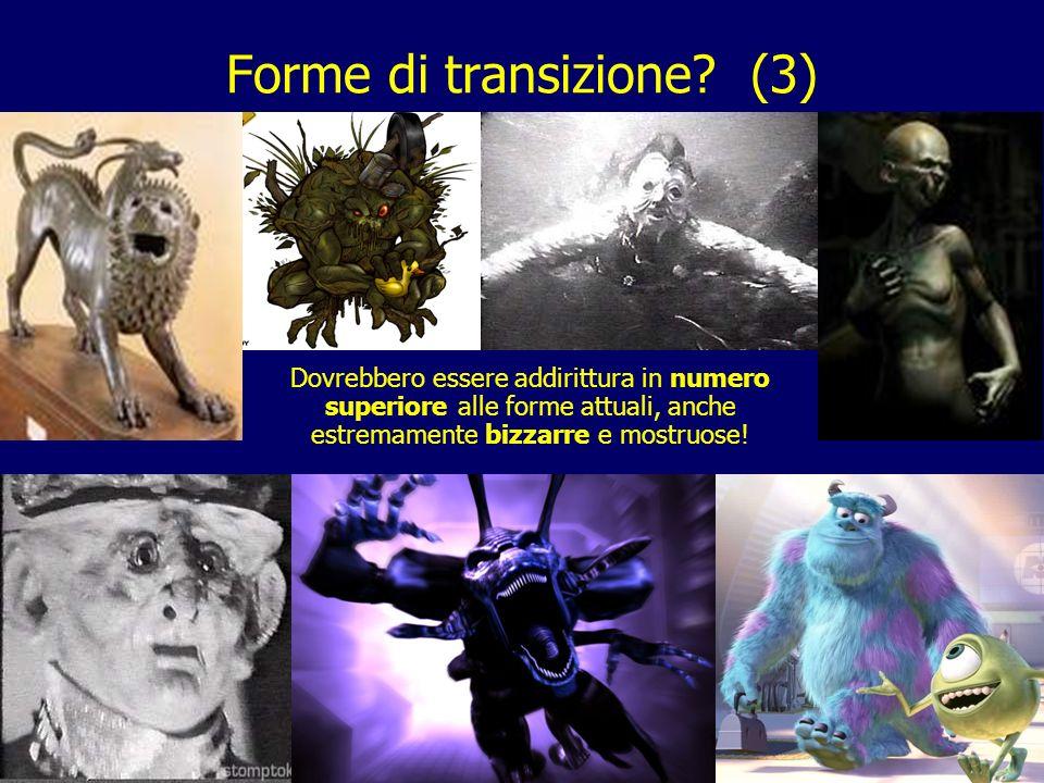 36 Forme di transizione? (3) Dovrebbero essere addirittura in numero superiore alle forme attuali, anche estremamente bizzarre e mostruose!