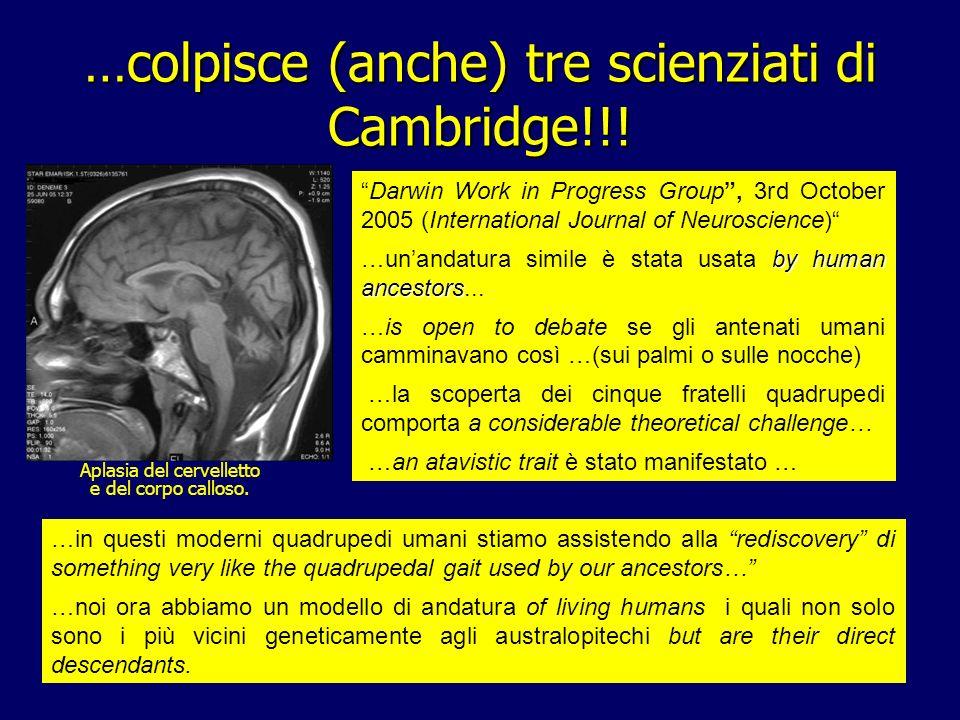 59 Aplasia del cervelletto e del corpo calloso. …colpisce (anche) tre scienziati di Cambridge!!! Darwin Work in Progress Group, 3rd October 2005 (Inte