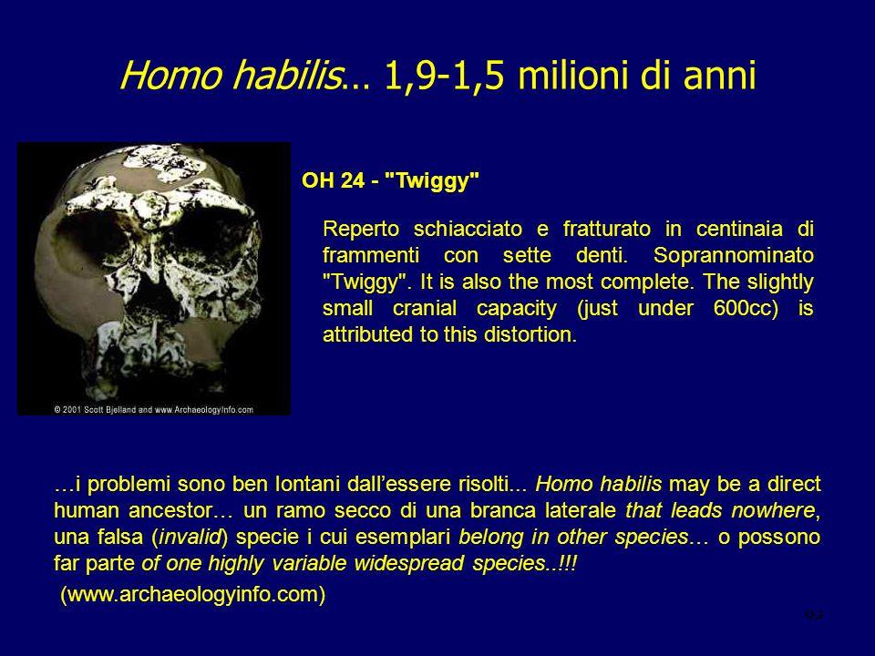 65 Homo habilis… 1,9-1,5 milioni di anni Reperto schiacciato e fratturato in centinaia di frammenti con sette denti. Soprannominato
