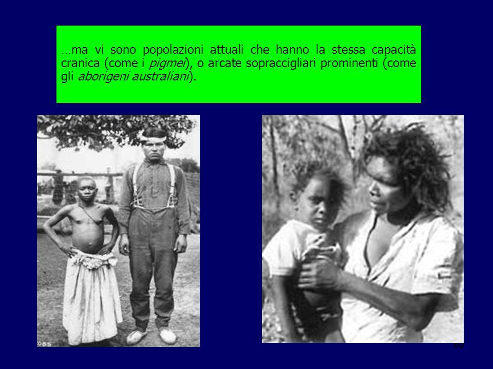 68 …ma vi sono popolazioni attuali che hanno la stessa capacità cranica (come i pigmei), o arcate sopraccigliari prominenti (come gli aborigeni austra