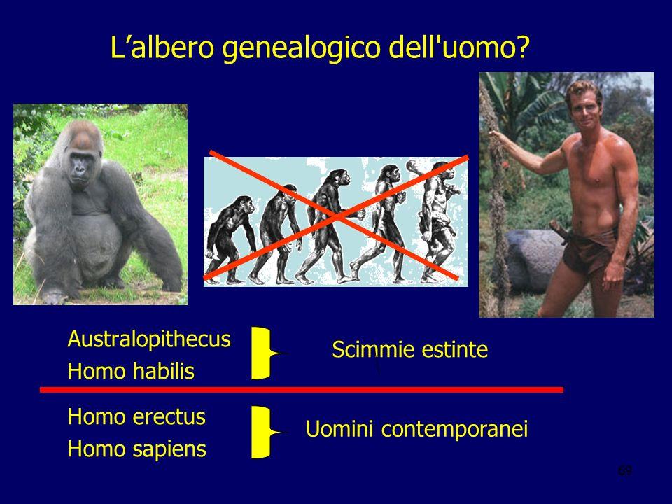 69 Lalbero genealogico dell'uomo? Australopithecus Homo habilis Homo erectus Homo sapiens Scimmie estinte Uomini contemporanei