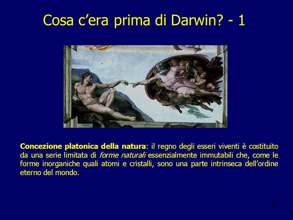 8 Cosa cera prima di Darwin? - 1 Concezione platonica della natura: il regno degli esseri viventi è costituito da una serie limitata di forme naturali