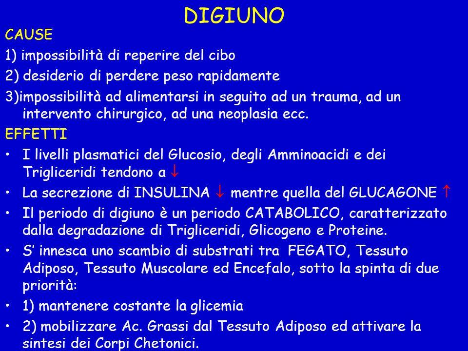DIGIUNO CAUSE 1) impossibilità di reperire del cibo 2) desiderio di perdere peso rapidamente 3)impossibilità ad alimentarsi in seguito ad un trauma, a