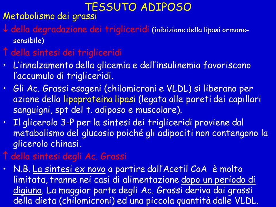 TESSUTO ADIPOSO Metabolismo dei grassi della degradazione dei trigliceridi (inibizione della lipasi ormone- sensibile) della sintesi dei trigliceridi