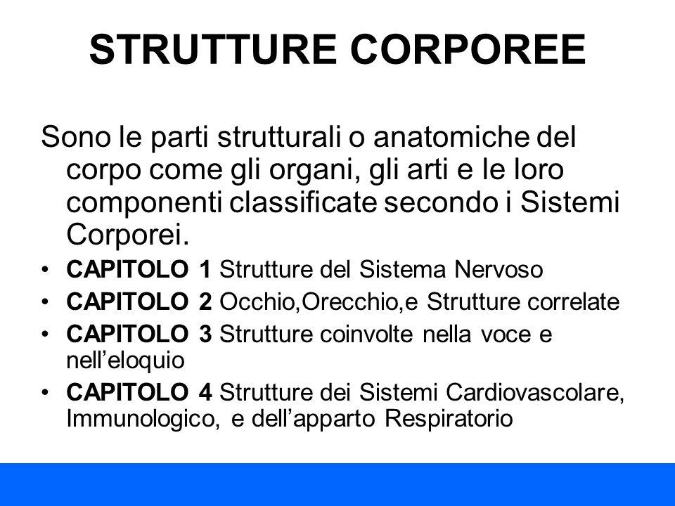STRUTTURE CORPOREE Sono le parti strutturali o anatomiche del corpo come gli organi, gli arti e le loro componenti classificate secondo i Sistemi Corp