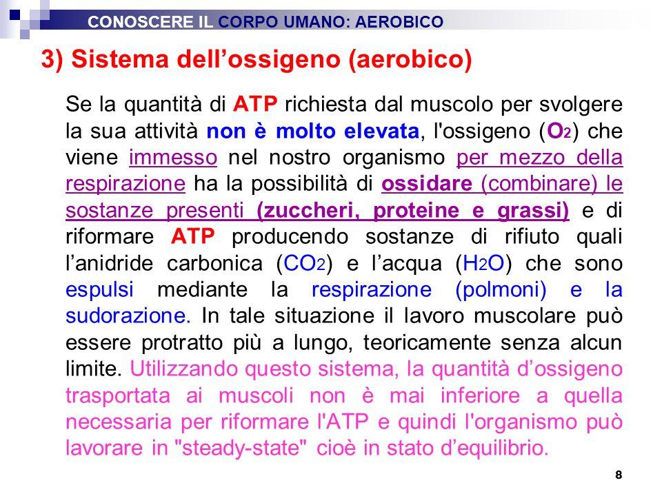 8 Se la quantità di ATP richiesta dal muscolo per svolgere la sua attività non è molto elevata, l'ossigeno (O 2 ) che viene immesso nel nostro organis