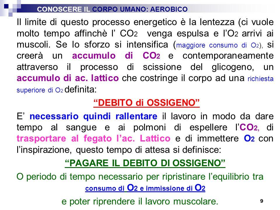 10 O2O2 + ADP energia liberata ATP Sforzi di lunga durata Superiori a 180 Intensità moderata OSSIDA ZUCCHERI GRASSI PROTEINE CO 2 ESPULSA con LESPIRAZIONE Anidride Carbonica H2OH2O ESPULSA con LA SUDORAZIONE Acqua CONOSCERE IL CORPO UMANO: AEROBICO