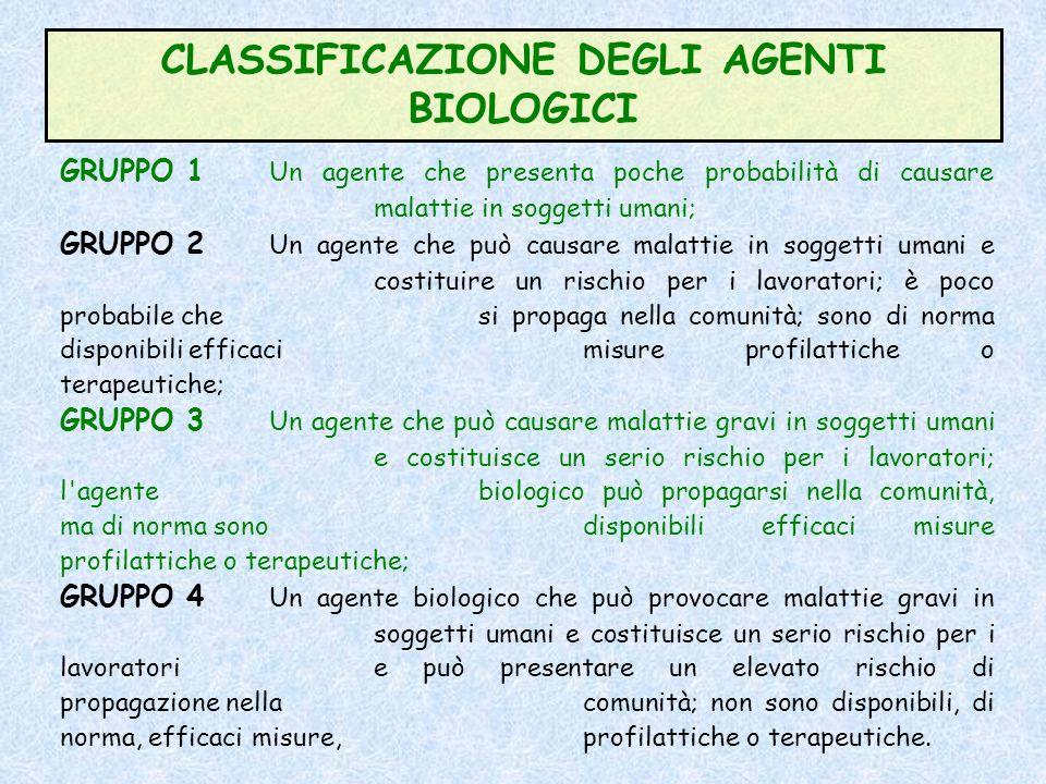 DEFINIZIONI Ai sensi dellarticolo 267 comma 1 del DLgs 81/08 si definiscono: AGENTE BIOLOGICO: qualsiasi microrganismo, anche se geneticamente modific