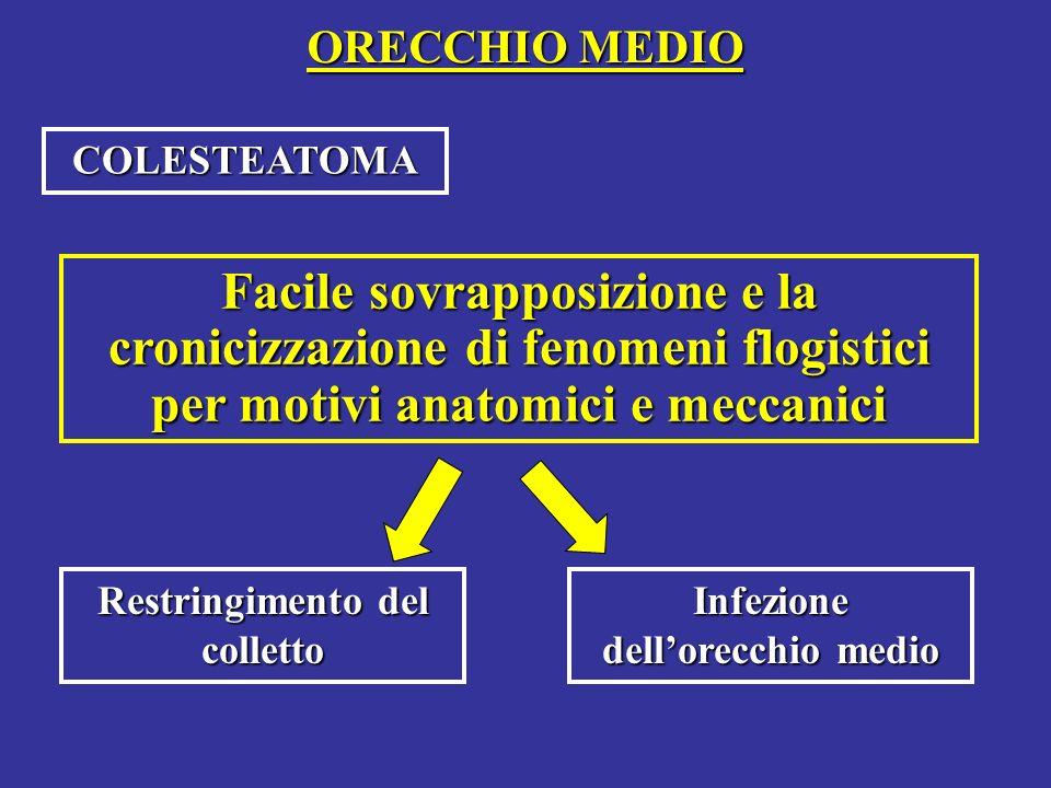 ORECCHIO MEDIO COLESTEATOMA Facile sovrapposizione e la cronicizzazione di fenomeni flogistici per motivi anatomici e meccanici Restringimento del colletto Infezione dellorecchio medio