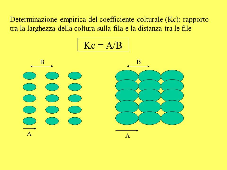 Il volume di adacquamento (VA) deve essere pari allETR e deve tenere conto di: – profondità delle radici (PR) – densità apparente del terreno (DA) – capacità idrica di campo (CIC, pF=2; 10 kPa) – punto di appassimento (PA, pF=4; 1500 kPa) – acqua disponibile (AD = CIC - PA) – acqua facilmente disponibile (AFD = 30-60%) – coefficiente di efficienza dellirrigazione (K ei : 0.9-0.95 nella microirrigazione, 0.6-0.7 nellirrigazione per aspersione, 0.4-0.5 nellinfiltrazione laterale) – coefficiente di uniformità dellirrigazione (K ui : 0.1-0.2) – frazione di lisciviazione (LF)