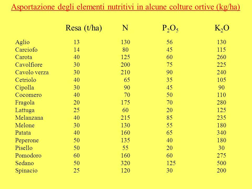 Asportazioni (kg/ha) del pomodoro in relazione allintensità colturale (Bianco, Pimpini, 1990) ____________________________________________________________________ da industria 80 179 40 161 225 18 da mensa in pienaria 60 136 55 232 339 36 da mensa in serra 125 450 75 900 550 120 200 675 165 1400 900 190 ________________________________________________________ Tipo di Resa N P 2 O 5 K 2 O CaO MgO coltura t/ha