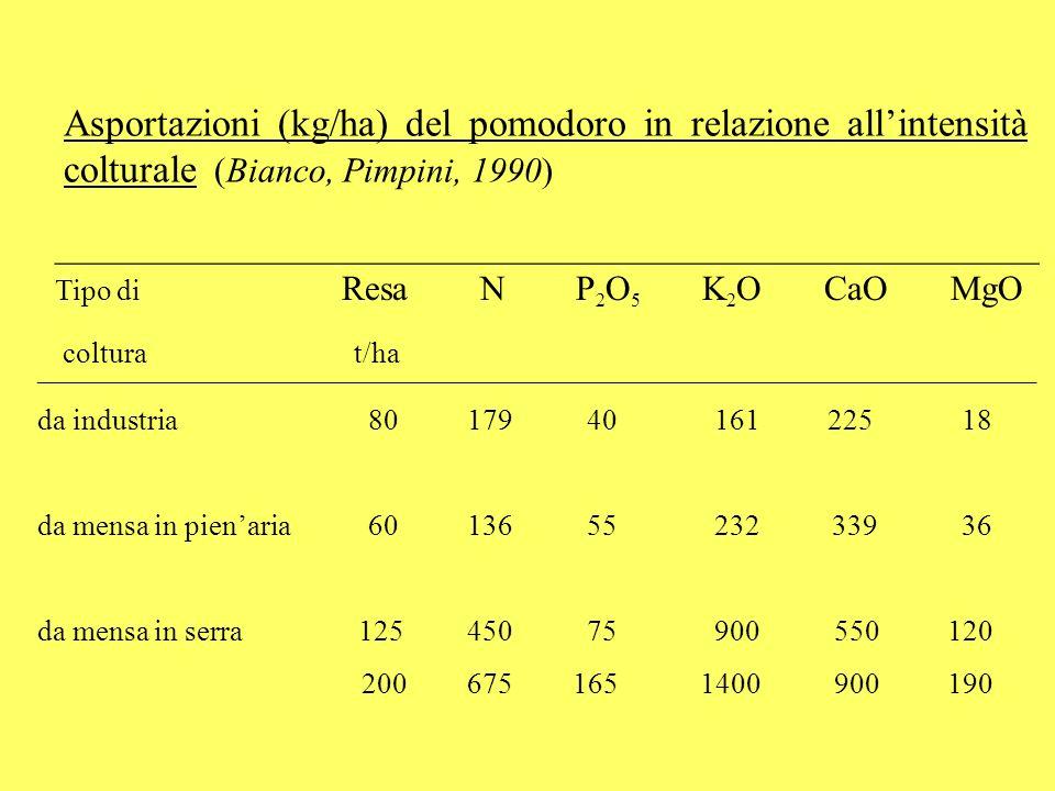 In serra, la ripartizione degli organi della pianta è diversa rispetto al pieno campo.