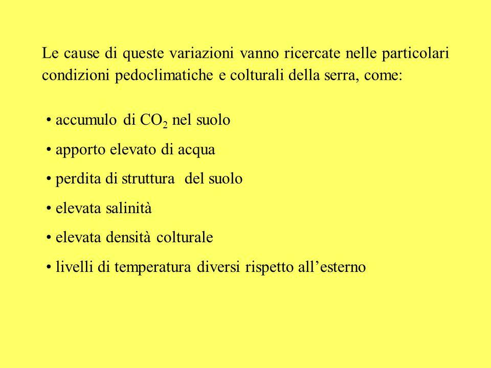 Asportazione cumulata (kg/ha) 0 50 100 150 200 250 300 350 K2OK2O N P2O5P2O5 507090110130 Giorni dallimpianto Asportazioni cumulate di azoto, fosforo e potassio in lattuga e patata PATATALATTUGA Asportazione cumulata (kg/ha) 0 40 80 120 160 200 240 K2OK2O N P2O5P2O5 Giorni dal trapianto 54668094100