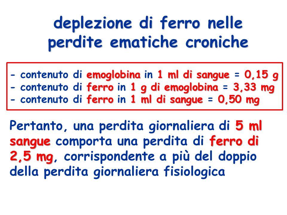 deplezione di ferro nelle perdite ematiche croniche emoglobina1 ml di sangue 0,15 g - contenuto di emoglobina in 1 ml di sangue = 0,15 g ferro1 g di emoglobina 3,33 mg - contenuto di ferro in 1 g di emoglobina = 3,33 mg ferro1 ml di sangue 0,50 mg - contenuto di ferro in 1 ml di sangue = 0,50 mg 5 ml sangue ferro di 2,5 mg Pertanto, una perdita giornaliera di 5 ml sangue comporta una perdita di ferro di 2,5 mg, corrispondente a più del doppio della perdita giornaliera fisiologica