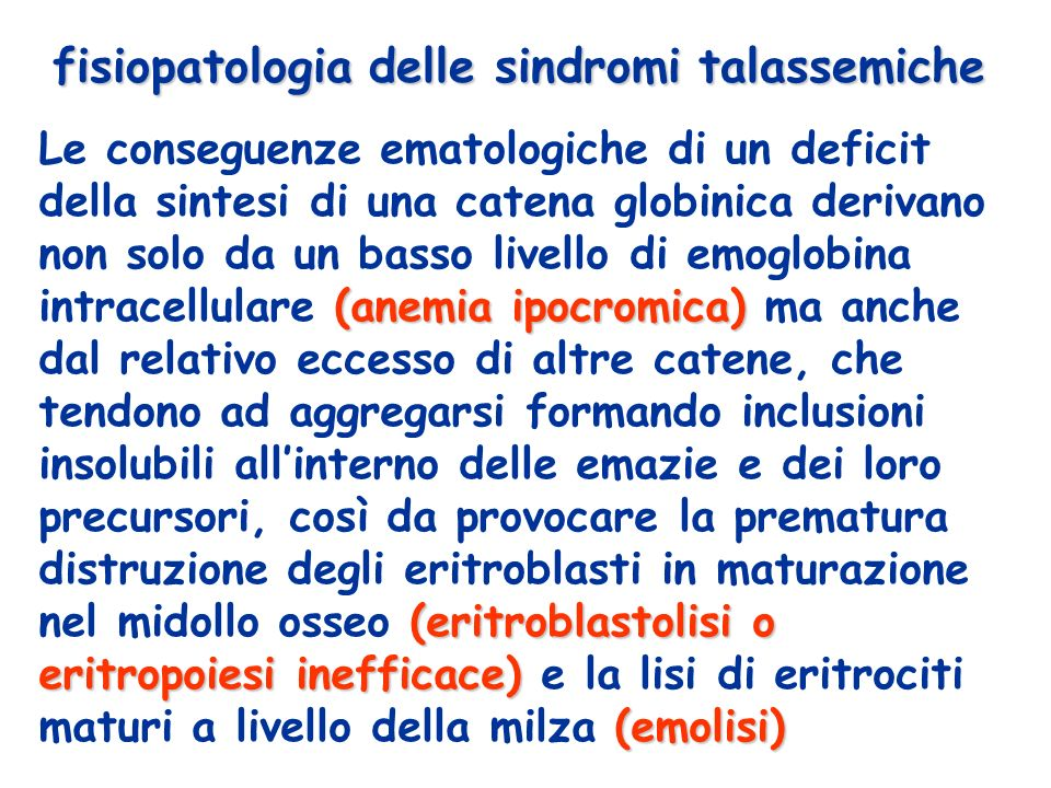 fisiopatologia delle sindromi talassemiche (anemia ipocromica) (eritroblastolisi o eritropoiesi inefficace) (emolisi) Le conseguenze ematologiche di un deficit della sintesi di una catena globinica derivano non solo da un basso livello di emoglobina intracellulare (anemia ipocromica) ma anche dal relativo eccesso di altre catene, che tendono ad aggregarsi formando inclusioni insolubili allinterno delle emazie e dei loro precursori, così da provocare la prematura distruzione degli eritroblasti in maturazione nel midollo osseo (eritroblastolisi o eritropoiesi inefficace) e la lisi di eritrociti maturi a livello della milza (emolisi)