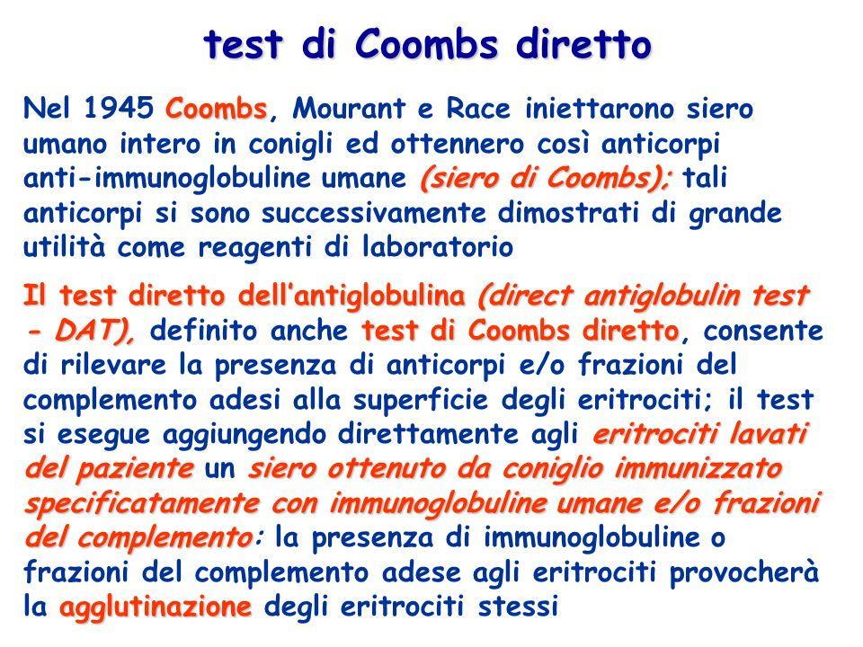 Coombs (siero di Coombs); Nel 1945 Coombs, Mourant e Race iniettarono siero umano intero in conigli ed ottennero così anticorpi anti-immunoglobuline umane (siero di Coombs); tali anticorpi si sono successivamente dimostrati di grande utilità come reagenti di laboratorio Il test diretto dellantiglobulina(direct antiglobulin test - DAT),test di Coombs diretto eritrociti lavati del pazientesiero ottenuto da coniglio immunizzato specificatamente con immunoglobuline umane e/o frazioni del complemento agglutinazione Il test diretto dellantiglobulina (direct antiglobulin test - DAT), definito anche test di Coombs diretto, consente di rilevare la presenza di anticorpi e/o frazioni del complemento adesi alla superficie degli eritrociti; il test si esegue aggiungendo direttamente agli eritrociti lavati del paziente un siero ottenuto da coniglio immunizzato specificatamente con immunoglobuline umane e/o frazioni del complemento: la presenza di immunoglobuline o frazioni del complemento adese agli eritrociti provocherà la agglutinazione degli eritrociti stessi test di Coombs diretto