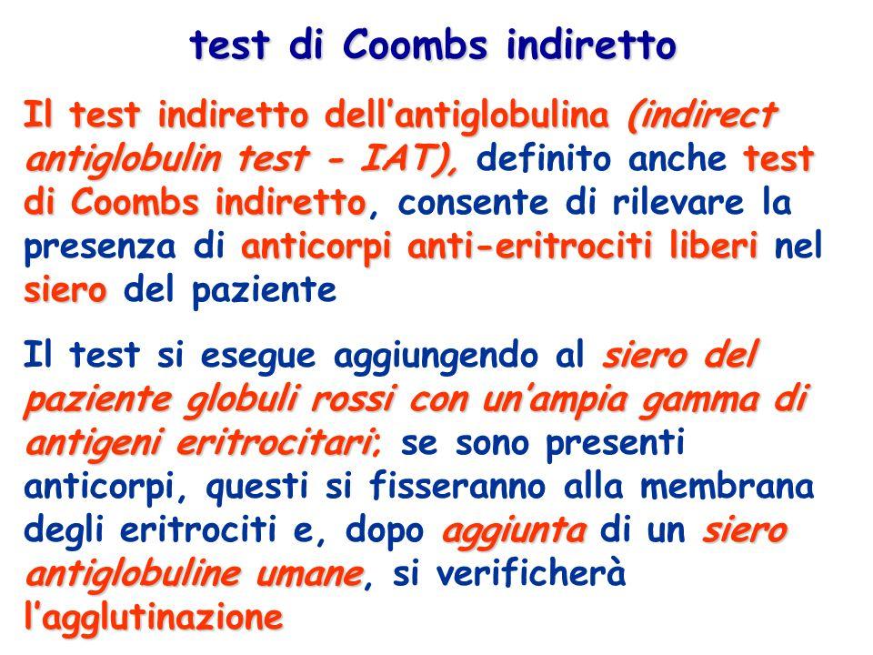 Il test indiretto dellantiglobulina(indirect antiglobulin test - IAT),test di Coombs indiretto anticorpi anti-eritrociti liberi siero Il test indiretto dellantiglobulina (indirect antiglobulin test - IAT), definito anche test di Coombs indiretto, consente di rilevare la presenza di anticorpi anti-eritrociti liberi nel siero del paziente test di Coombs indiretto siero del paziente globuli rossi con unampia gamma di antigeni eritrocitari aggiuntasiero antiglobuline umane lagglutinazione Il test si esegue aggiungendo al siero del paziente globuli rossi con unampia gamma di antigeni eritrocitari; se sono presenti anticorpi, questi si fisseranno alla membrana degli eritrociti e, dopo aggiunta di un siero antiglobuline umane, si verificherà lagglutinazione