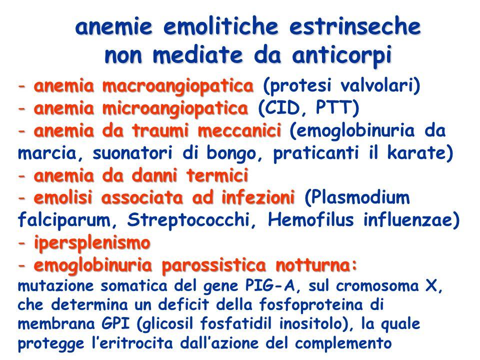 - anemia macroangiopatica - anemia macroangiopatica (protesi valvolari) - anemia microangiopatica - anemia microangiopatica (CID, PTT) - anemia da traumi meccanici - anemia da traumi meccanici (emoglobinuria da marcia, suonatori di bongo, praticanti il karate) - anemia da danni termici - emolisi associata ad infezioni - emolisi associata ad infezioni (Plasmodium falciparum, Streptococchi, Hemofilus influenzae) - ipersplenismo - emoglobinuria parossistica notturna: mutazione somatica del gene PIG-A, sul cromosoma X, che determina un deficit della fosfoproteina di membrana GPI (glicosil fosfatidil inositolo), la quale protegge leritrocita dallazione del complemento anemie emolitiche estrinseche non mediate da anticorpi