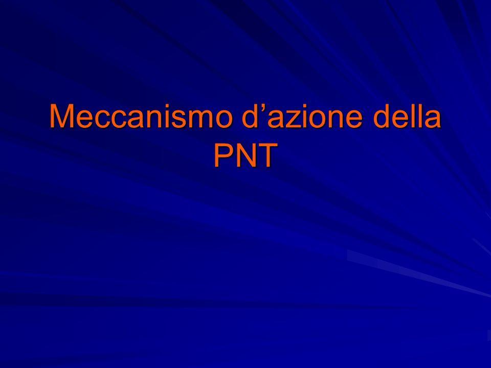 Meccanismo dazione della PNT