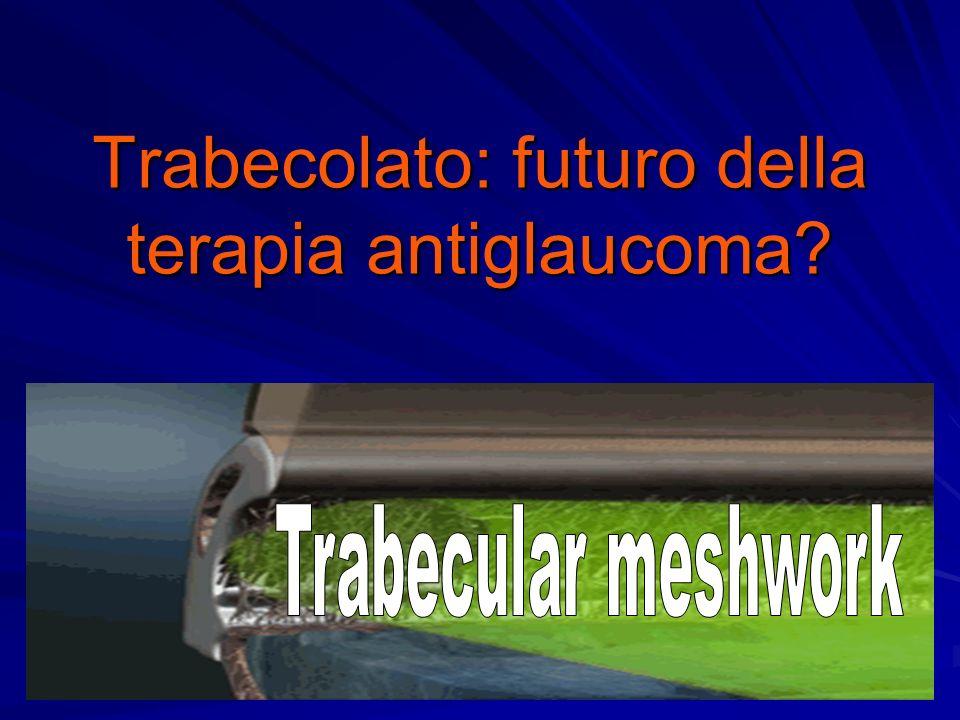 Trabecolato: futuro della terapia antiglaucoma?