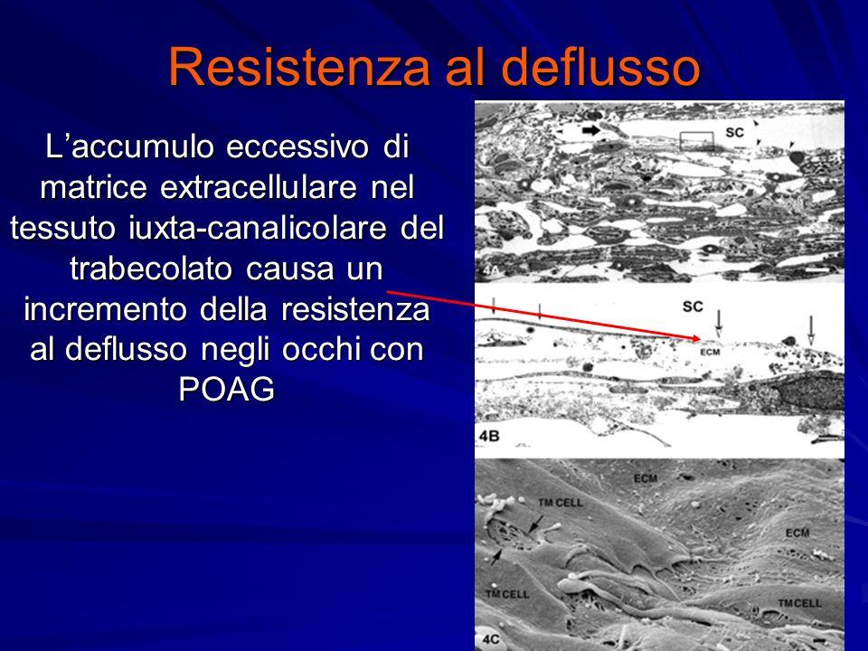 Resistenza al deflusso Laccumulo eccessivo di matrice extracellulare nel tessuto iuxta-canalicolare del trabecolato causa un incremento della resistenza al deflusso negli occhi con POAG