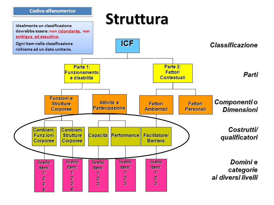 Struttura Classificazione Parti Componenti o Dimensioni Costrutti/qualificatori Domini e categorie ai diversi livelli ai diversi livelli ICF Parte 1: