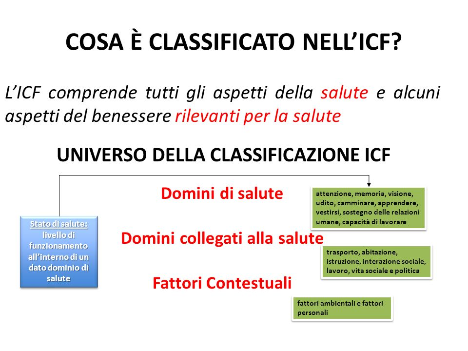20 Corso ICF Codificare solo le informazioni esplicite …codificare le osservazioni, non le inferenze.