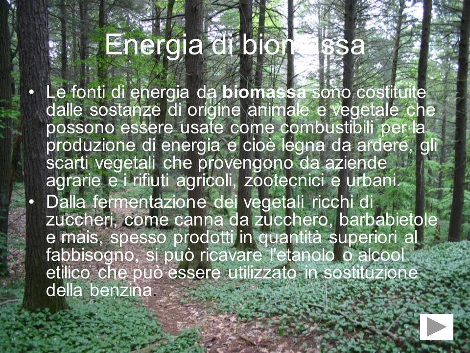 Energia di biomassa Le fonti di energia da biomassa sono costituite dalle sostanze di origine animale e vegetale che possono essere usate come combust
