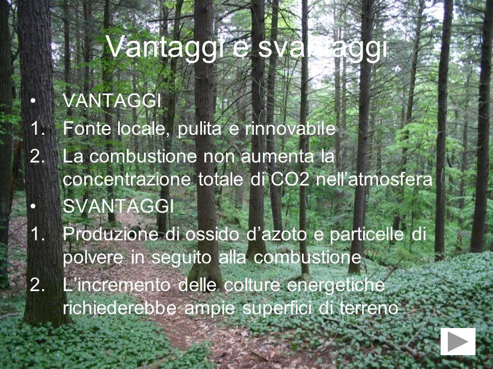 Vantaggi e svantaggi VANTAGGI 1.Fonte locale, pulita e rinnovabile 2.La combustione non aumenta la concentrazione totale di CO2 nellatmosfera SVANTAGG