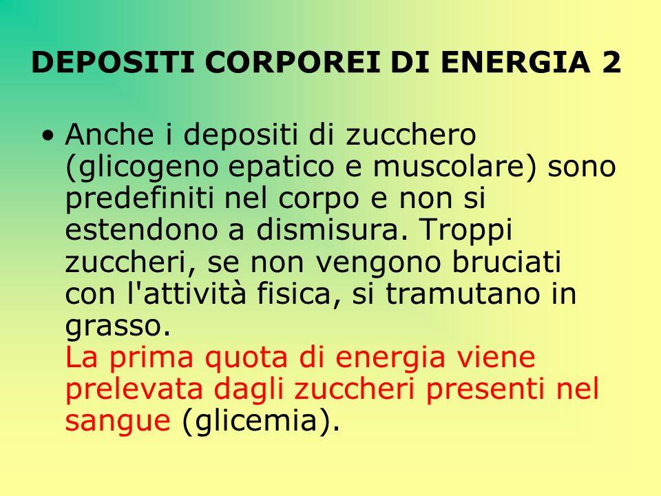 DEPOSITI CORPOREI DI ENERGIA 2 Anche i depositi di zucchero (glicogeno epatico e muscolare) sono predefiniti nel corpo e non si estendono a dismisura.