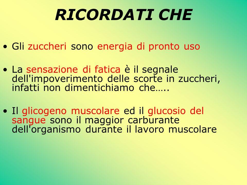 RICORDATI CHE Gli zuccheri sono energia di pronto uso La sensazione di fatica è il segnale dell'impoverimento delle scorte in zuccheri, infatti non di