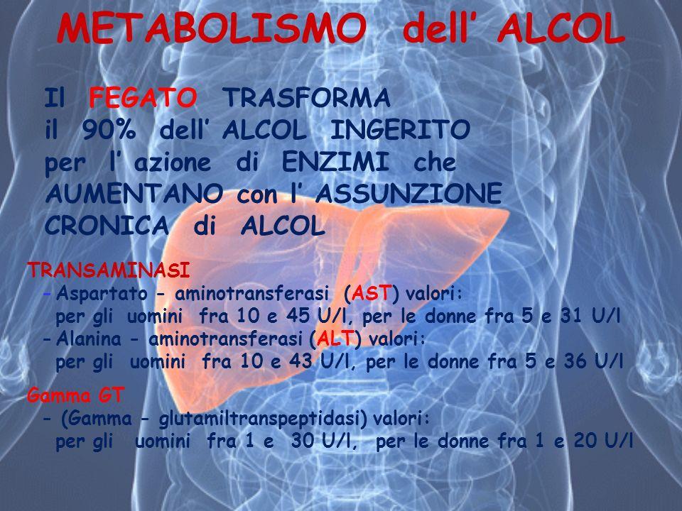 Il FEGATO TRASFORMA il 90% dell ALCOL INGERITO per l azione di ENZIMI che AUMENTANO con l ASSUNZIONE CRONICA di ALCOL TRANSAMINASI -Aspartato - aminot
