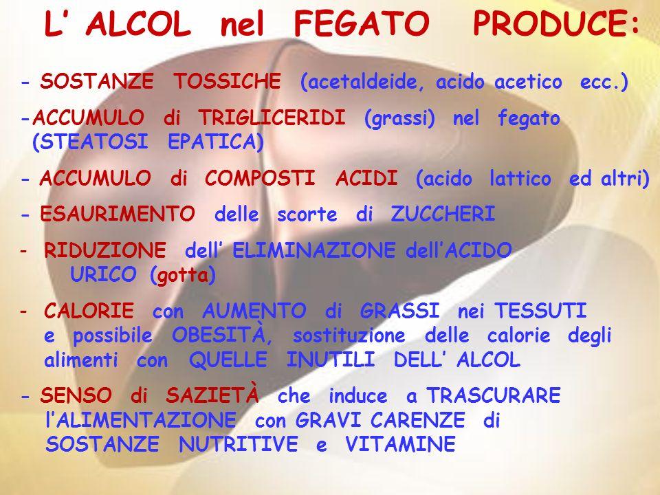 - SOSTANZE TOSSICHE (acetaldeide, acido acetico ecc.) -ACCUMULO di TRIGLICERIDI (grassi) nel fegato (STEATOSI EPATICA) - ACCUMULO di COMPOSTI ACIDI (a